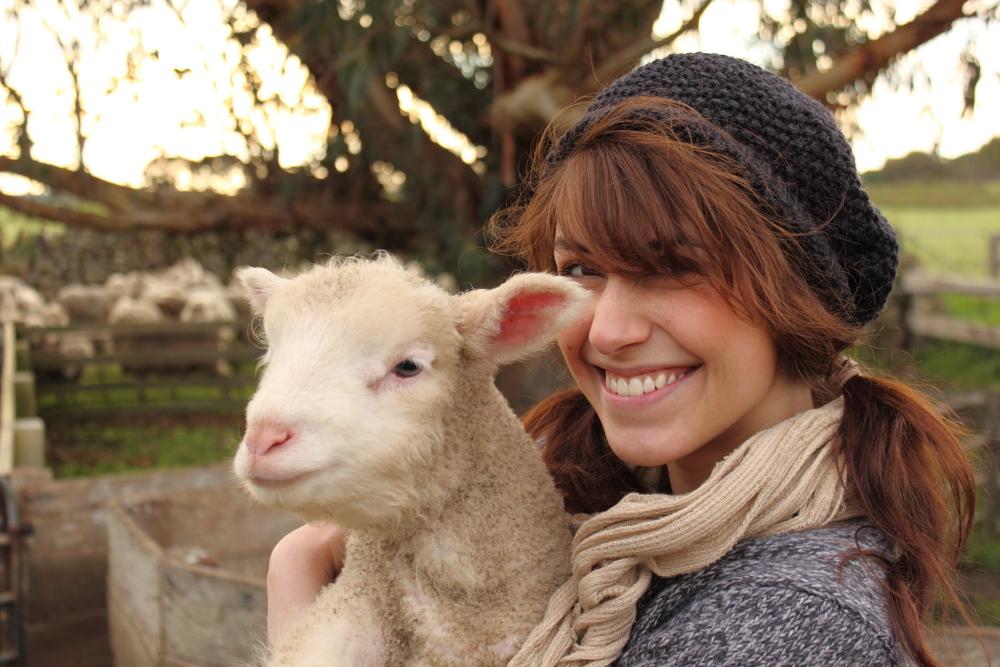 Farm - Franzi und das Schaf